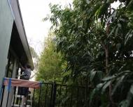 Melbourne-Rendering-House-Render-26