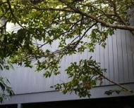 Melbourne-Rendering-House-Render-5