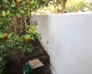 Elwood Rendering Polished Concrete 5